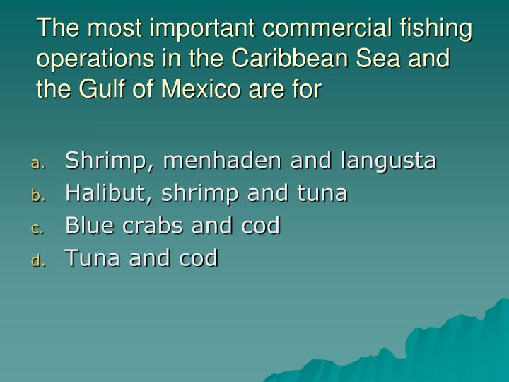 The most important commercial fishing operations in the Caribbean Sea and the Gulf of Mexico are for