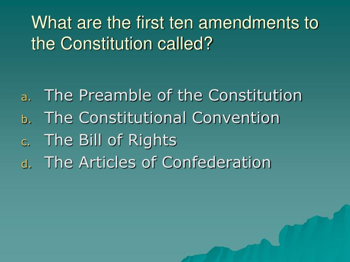 What are the first ten amendments to the Constitution called?