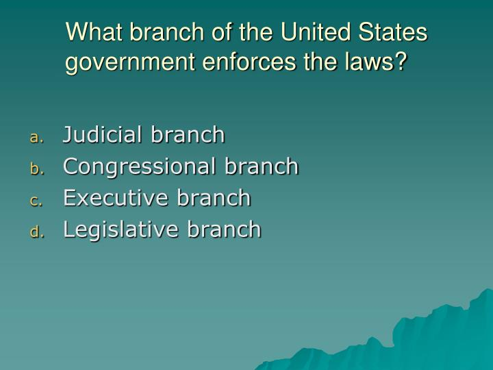 What branch of the United States government enforces the laws?