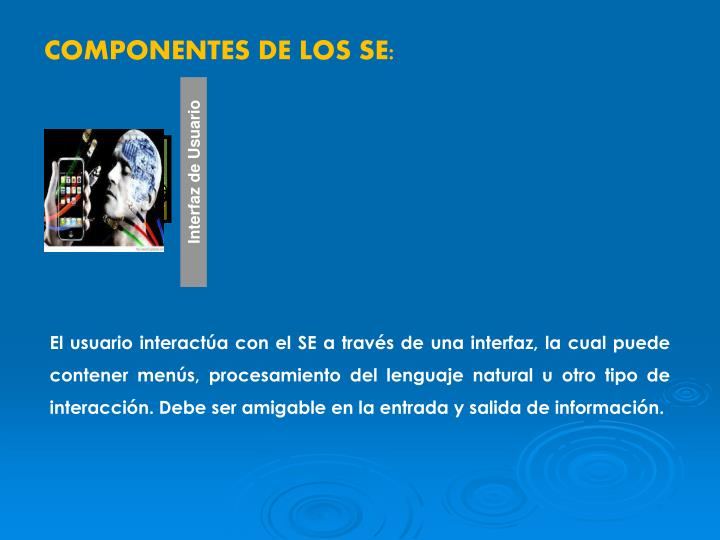 COMPONENTES DE LOS SE:
