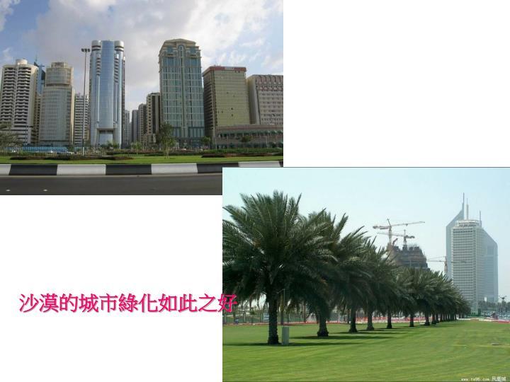 沙漠的城市綠化如此之好