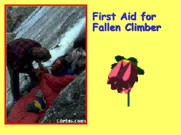 First Aid for Fallen Climber
