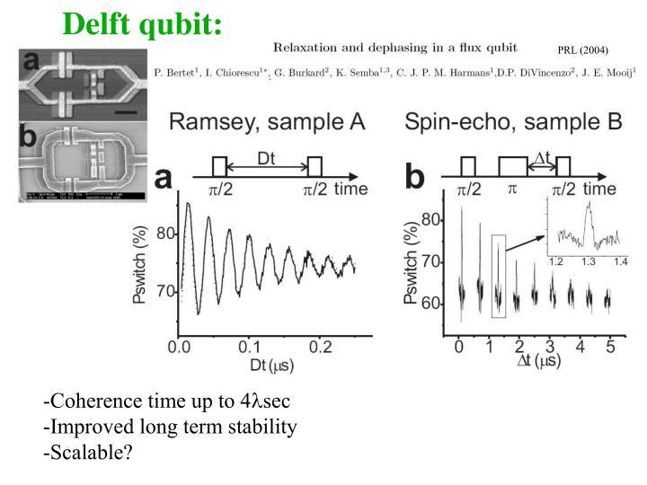 Delft qubit: