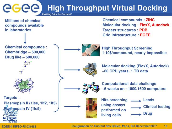 High Throughput Virtual Docking