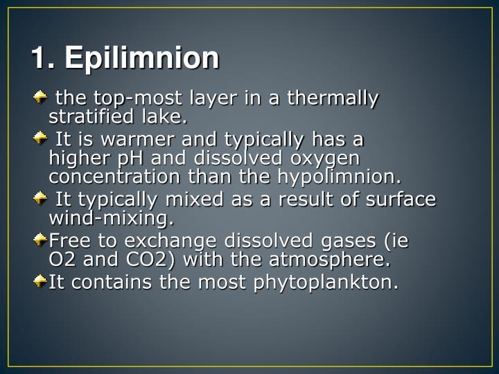 1. Epilimnion
