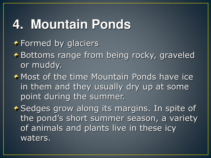 4.  Mountain Ponds