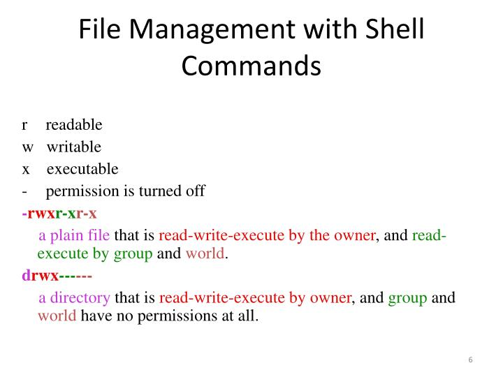 File Management with Shell Commands