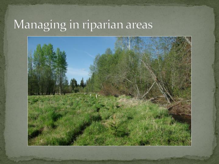 Managing in riparian areas