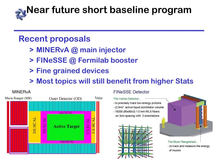 Near future short baseline program