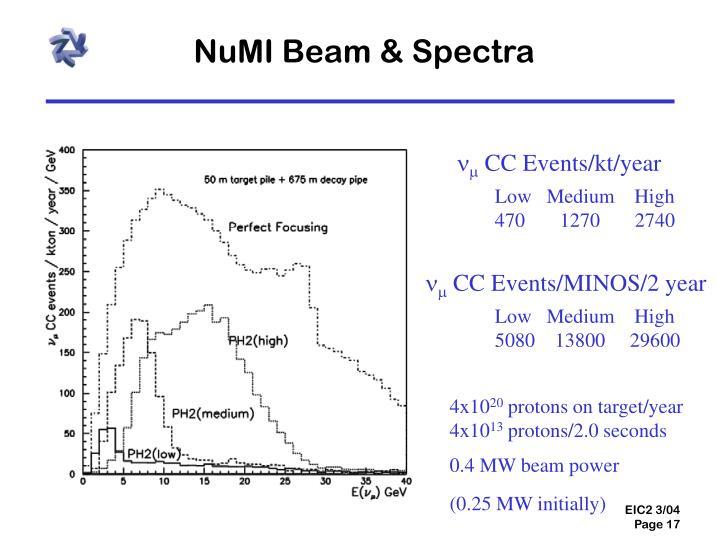 NuMI Beam & Spectra