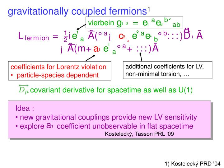 gravitationally coupled fermions