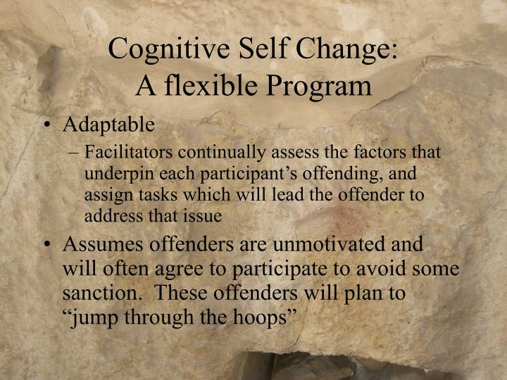 Cognitive Self Change: