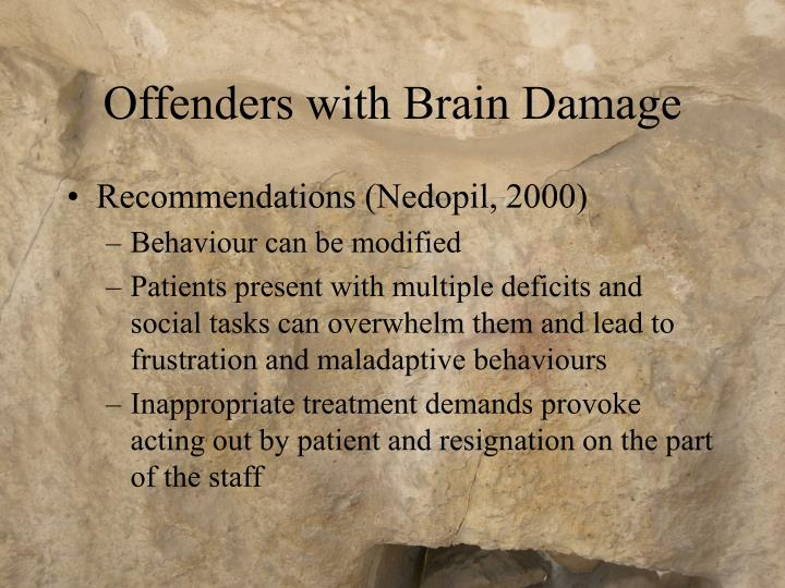 Offenders with Brain Damage
