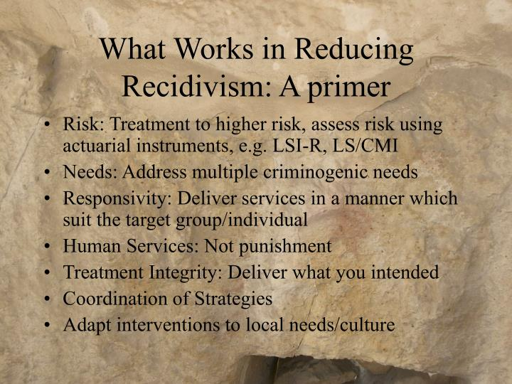 What works in reducing recidivism a primer