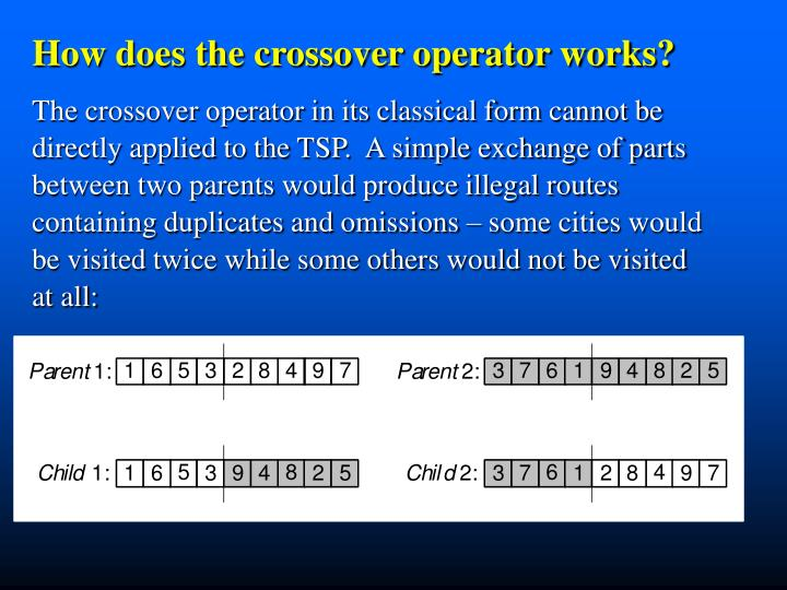 How does the crossover operator works?