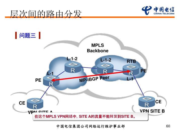 MPLS Backbone