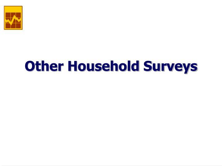 Other Household Surveys