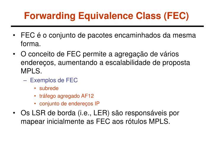 Forwarding Equivalence Class (FEC)