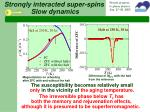 strongly interacted super spins slow dynamics