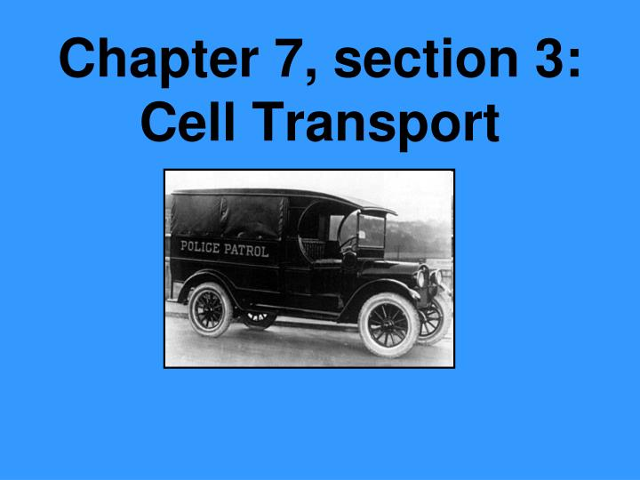 Chapter 7 section 3 cell transport