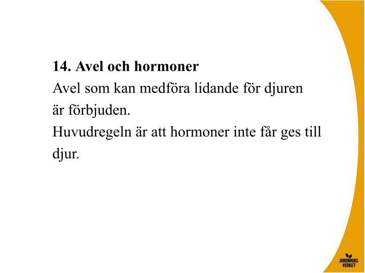 Avel och hormoner
