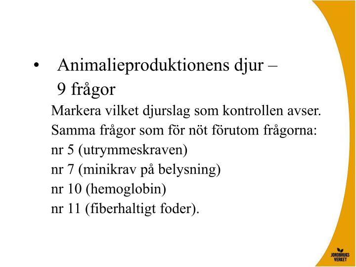 Animalieproduktionens djur –