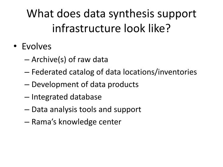 What does data synthesis support infrastructure look like?