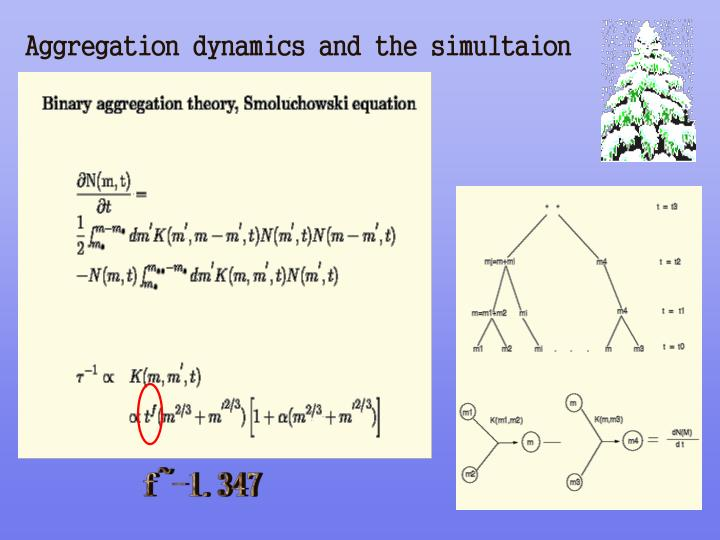 Aggregation dynamics and the simultaion
