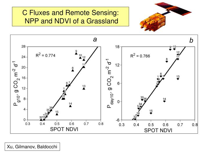C Fluxes and Remote Sensing: