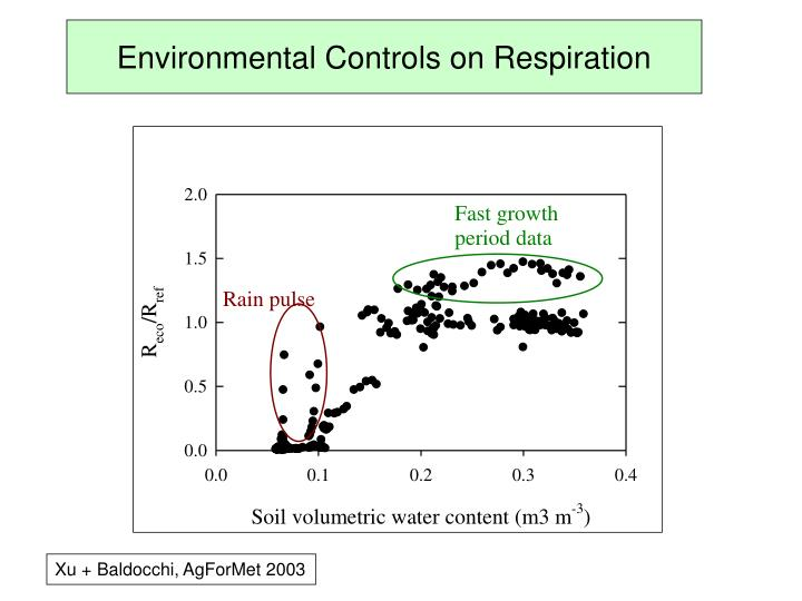 Environmental Controls on Respiration