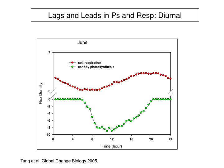 Lags and Leads in Ps and Resp: Diurnal