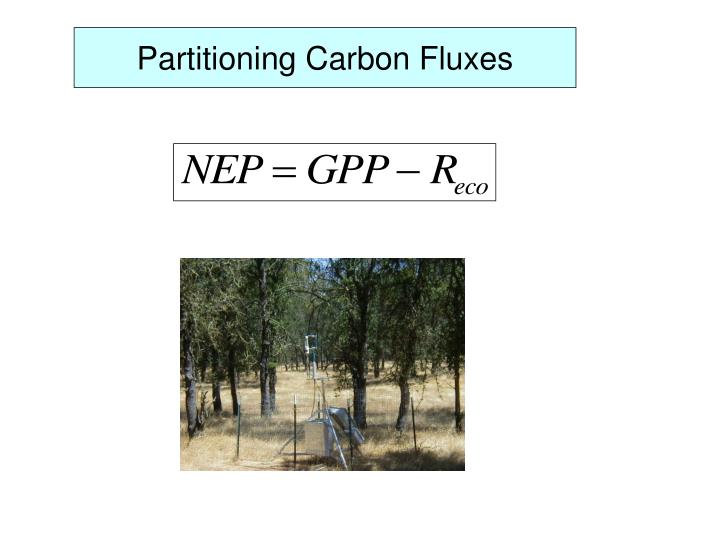 Partitioning Carbon Fluxes