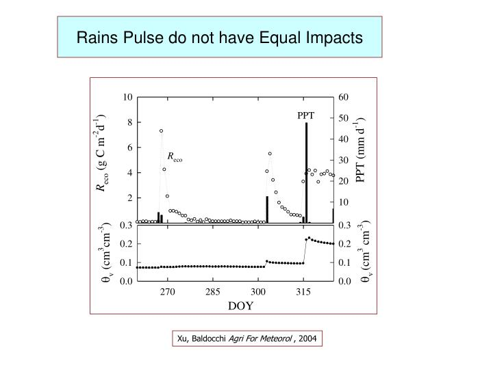 Rains Pulse do not have Equal Impacts