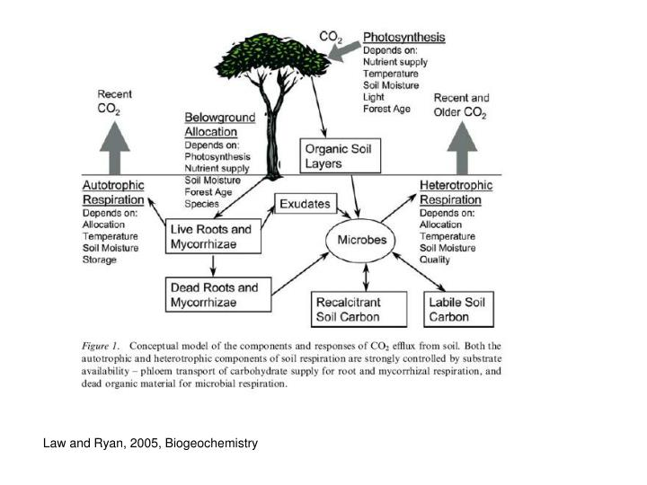 Law and Ryan, 2005, Biogeochemistry