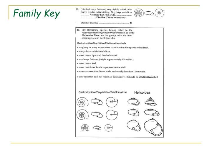 Family Key