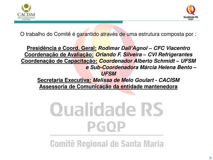 O trabalho do Comitê é garantido através de uma estrutura composta por :