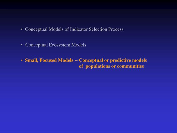 Conceptual Models of Indicator Selection Process