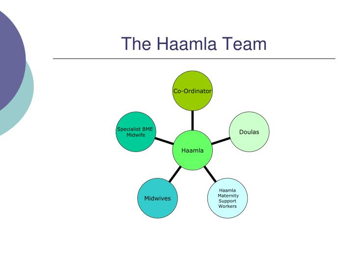 The haamla team
