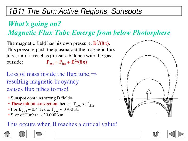 1B11 The Sun: Active Regions. Sunspots