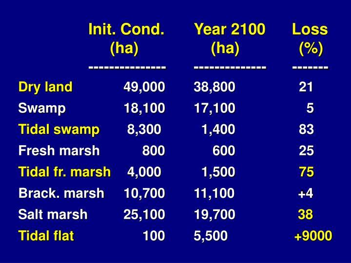 Init. Cond.Year 2100      Loss