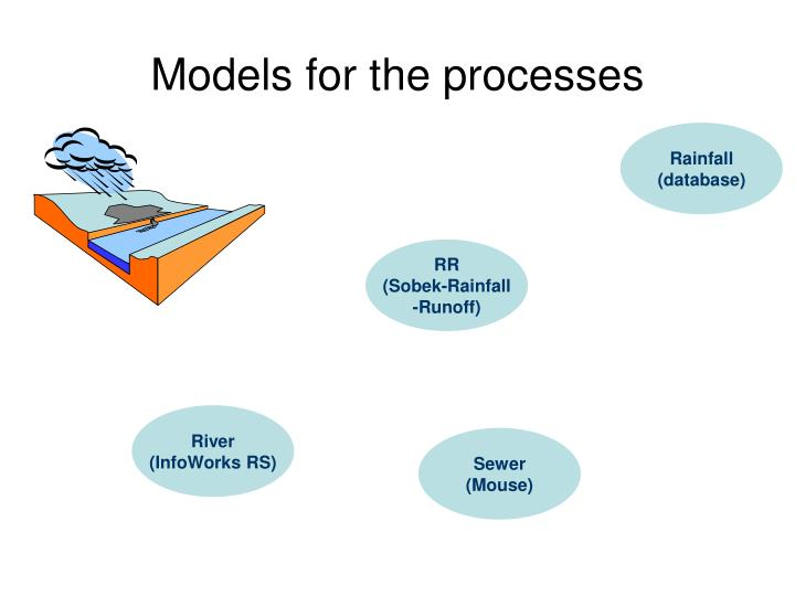 Models for the processes