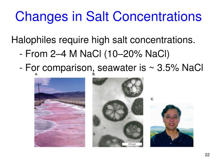 Changes in Salt Concentrations