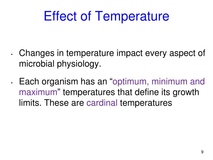 Effect of Temperature