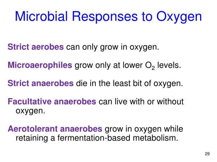 Microbial Responses to Oxygen