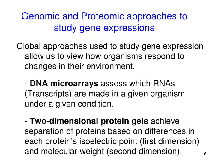Global approaches used to study gene expression allow us to view how organisms respond to changes in their environment.