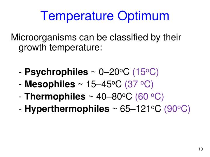 Temperature Optimum