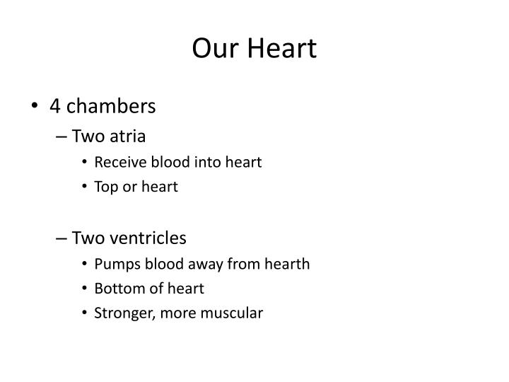 Our Heart