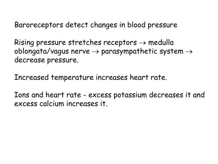 Baroreceptors detect changes in blood pressure