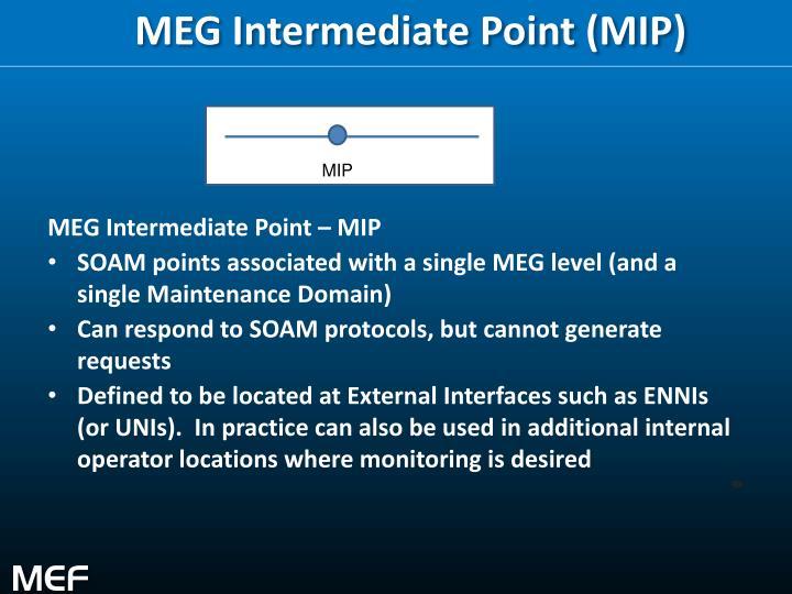 MEG Intermediate Point (MIP)