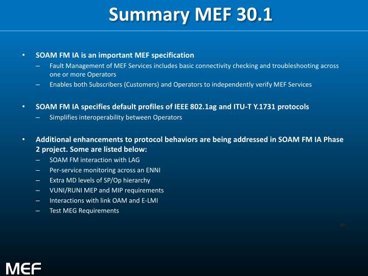 Summary MEF 30.1